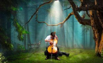 Musikk og musikktjenester